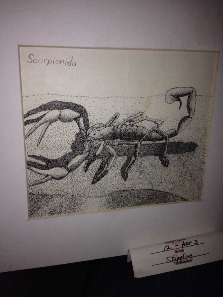 Scorpion Drawing by Trevis Lawyer